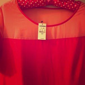 Express shift dress